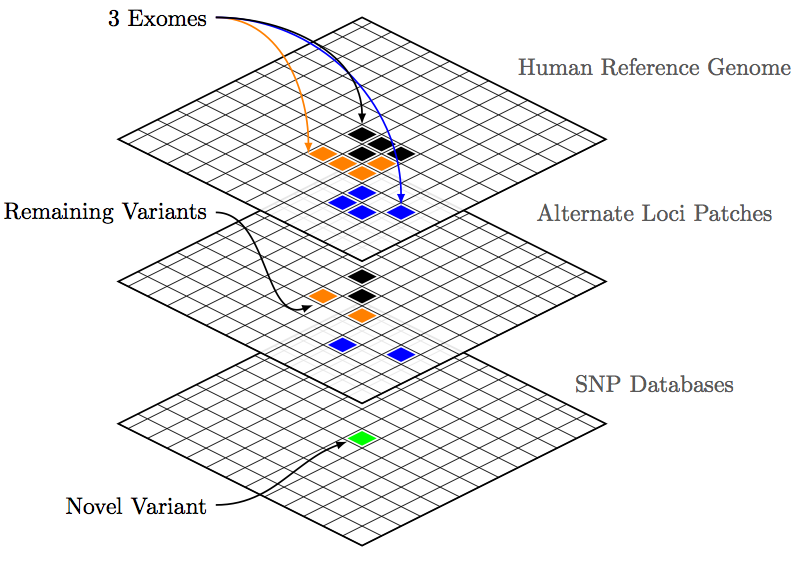 Anomaly Detection In The Human Genome   Petri Dish Talk